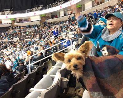 Dog Friendly Hockey Games - 2017 / 2018 Season