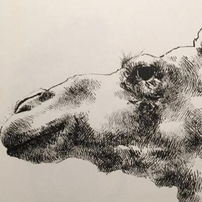 Swipe and be underwhelmed by its unfinished neck • Pigma Micron