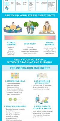 Good stress, bad stress. Here's how to find your stress sweet spot