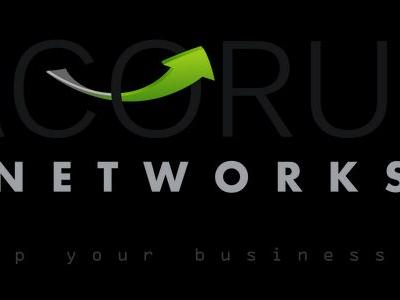 Acorus Networks raises $6 million to protect businesses from DDoS attacks