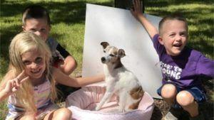 "Family Throws ""Bye Bye Party"" To Celebrate Dying Foster Dog's Life"