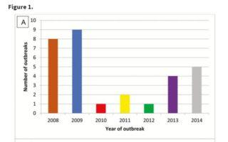 Study identifies rate of outbreaks linked to produce in Brazil