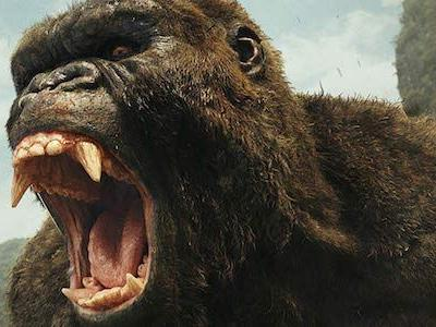 Godzilla Vs. Kong: An Updated Cast List