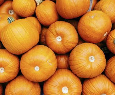Yes, You Can Have Pumpkin on a Low-Carb Diet, but You'll Need to Watch Your Portions