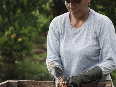 For DOVE® Chocolate, Sustainability Has Always Been Key