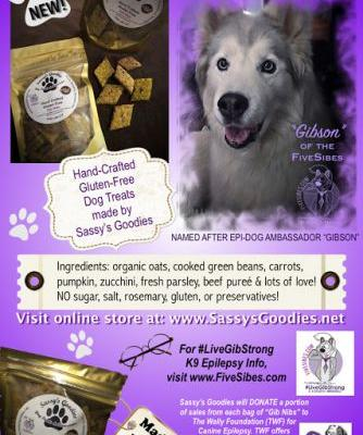 "Epilepsy Day: Debut of ""Gib Nibs"" to Benefit The Wally Foundation & A Treat Giveaway!"
