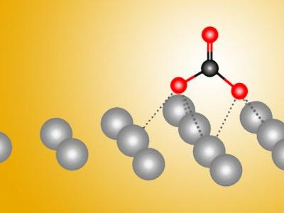 A 'Silver Bullet' for the Chemical Conversion of Carbon Dioxide