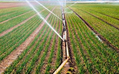 Important Clarification of FSMA Produce Rule Ag Water Compliance Dates