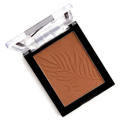 Wet 'n' Wild What Shady Beaches Color Icon Bronzer Review & Swatches