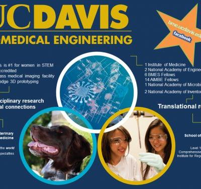 Faculty Position in Biomedical Engineering, University of California, Davis