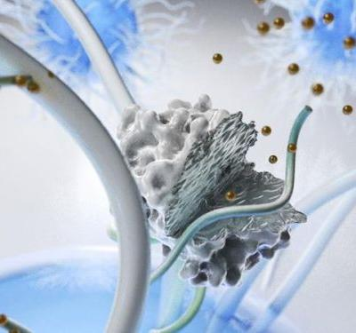 Magnetic Field Controls Drug Delivery