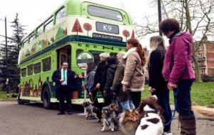 London Launches The World's First Doggy Tour Bus