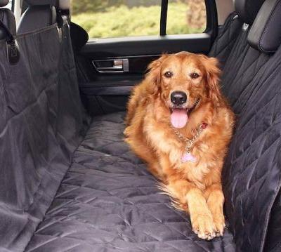 What Are The Best Car Seat Covers For Dogs?