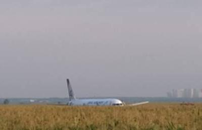 Russian airliner with 234 onboard suffers birdstrike, makes BELLY LANDING near Moscow