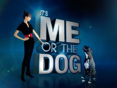 It's Me or the Dog Free on YouTube!