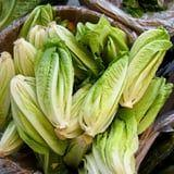 The CDC Warns Romaine Lettuce Is Unsafe to Eat Again, Reports Another E. Coli Outbreak