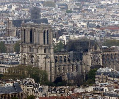 Notre-Dame burned so quickly because of the massive amounts of wood in the structure - but people are already offering up more trees for its reconstruction