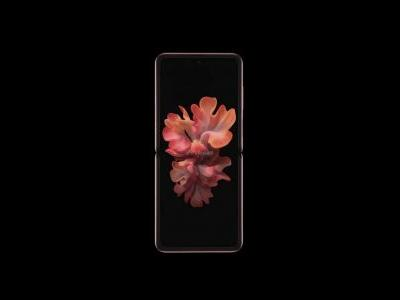 Galaxy Z Flip 5G 'Mystic Bronze' Shown From All Angles