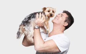 Simon Cowell Helps Rescue 200+ Dogs From South Korean Meat Farm