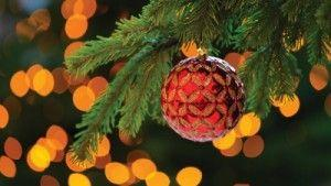 Get in the Festive Spirit at Four Seasons Hotel Cairo at the first residence