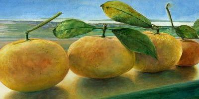 Watercolor Still Life & Artist Tools for help with Painting Values