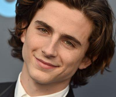 Timothée Chalamet Will Donate The Salary From His Woody Allen Movie To Charity