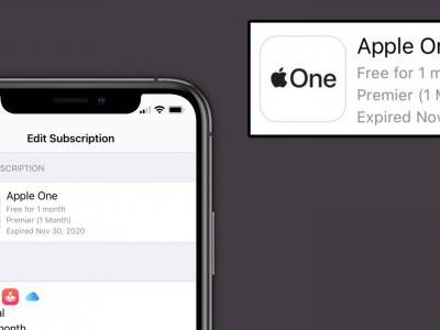 Some Apple One subscriptions appearing as 'expired' as first day users renew