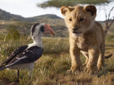 New 'Lion King' Remake Is More Creative Dead End Than Circle Of Life