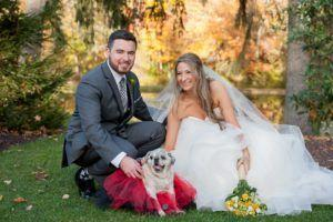 This Pet Resort Offers Services For Dogs On Their Humans' Wedding Day