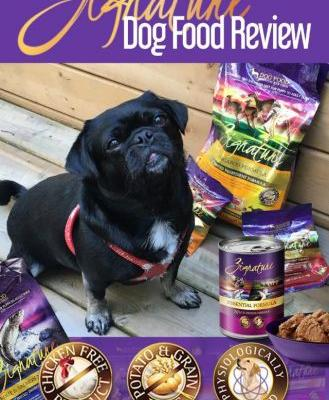 What Makes Zignature Dog Food Unique?