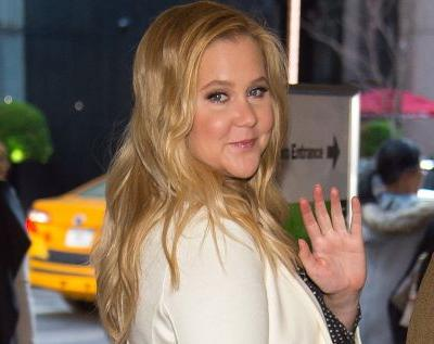 Amy Schumer and Her New Beau Just Became Instagram Official