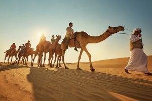 Abu Dhabi sees increase of the visitors