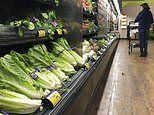 CDC reveals that E. coli outbreak has sickened 59 people in 15 states