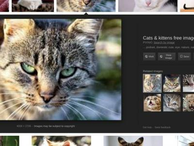 How to get the Google Images 'view image' button back in Firefox