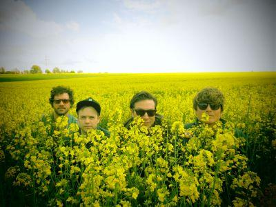 """Oh Sees - """"Animated Violence"""""""