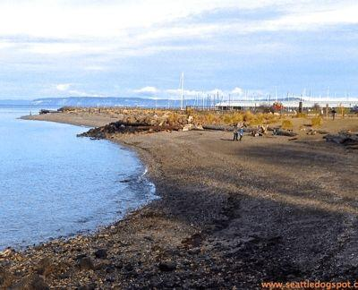 Edmonds Off-Leash Area is a Hidden Gem