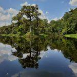 New Haunts: Wakulla Springs State Park