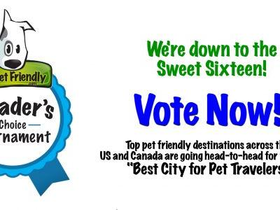 We're Down to the Sweet 16 - Vote Now in the 2018 Best City for Pet Travelers Tournament!