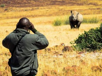 The last wilderness: Tracking black rhinos in Namibia