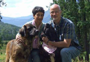 Couple Relocates Their 46 Rescue Dogs To A Four Acre Canadian Paradise