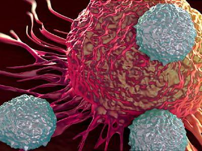 Scientists Reprogram Immune Cells to Fight Cancer