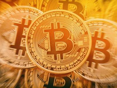 """Noted financial guru Roubini says Bitcoin is the """"biggest bubble in human history"""" and will crash to ZERO"""