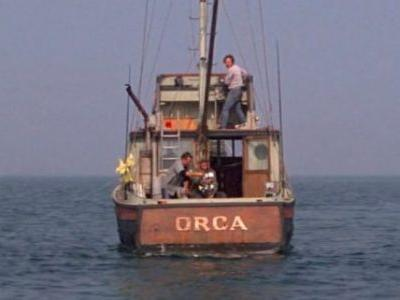 'Return of the Orca' Hopes to Recreate the Boat From 'Jaws' to Support Shark Conservation