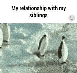 101 Sister And Brother Quotes To Share When You Want To Score Sibling Points