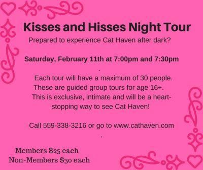Kisses and Hisses Night Tour