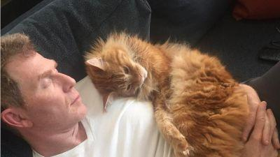 Bobby Flay Only Takes Cat Naps With Instagram-Famous Cats