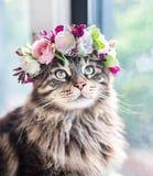 This Woman Takes the Most Breathtaking Photos of Her Cats Wearing Floral Crowns Like True Queens