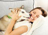 Pets may cure depression: Adopting a furry friend relieves symptoms in a third of patients