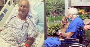 Veteran Saved By Chihuahua After Having A Stroke On A Boat