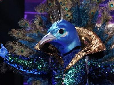 Introducing 'The Masked Singer,' Featuring Television's Hottest Peacock-Hippo Battle